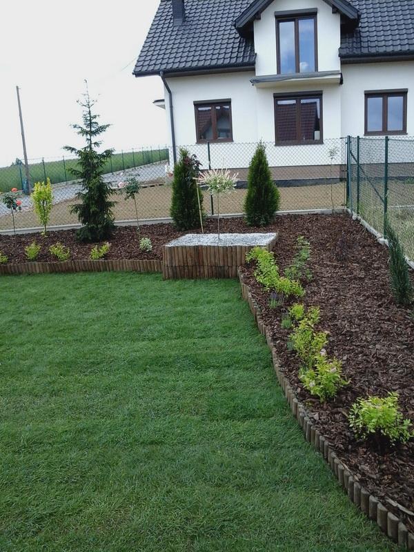 obsadzenie trawnika roślinami