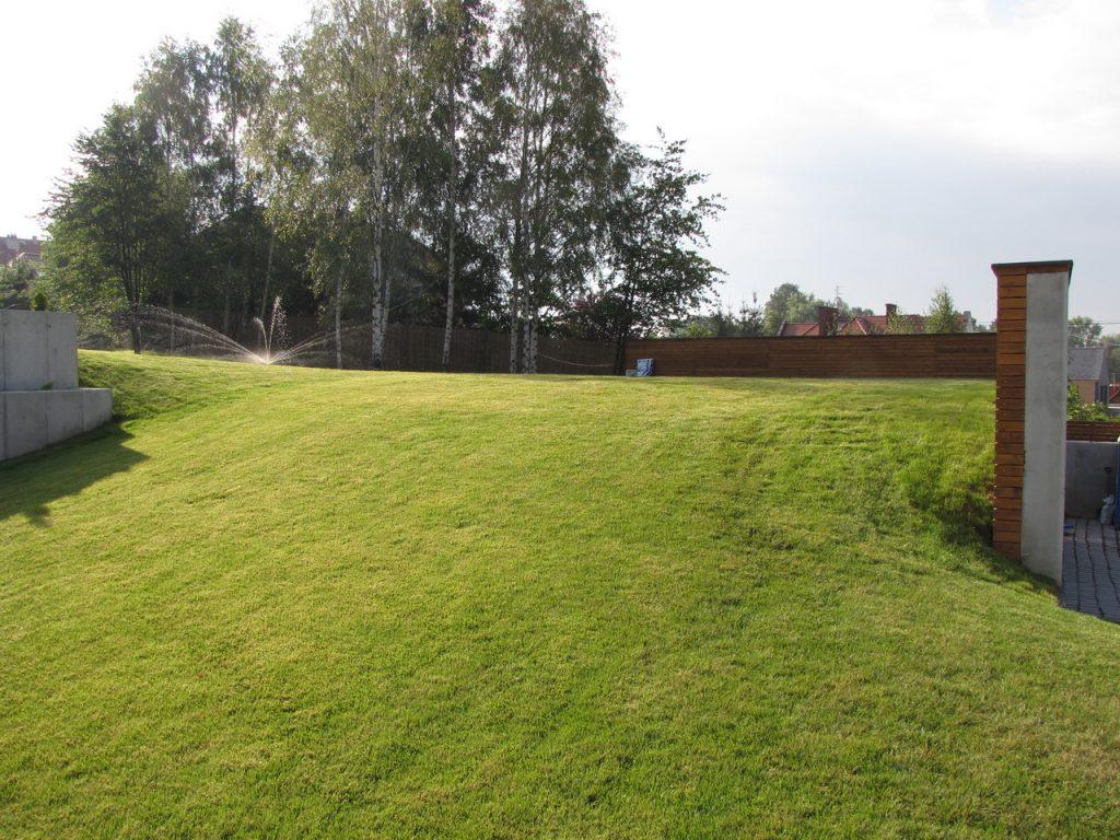 trawnik nawodniony