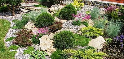ogród skalniak kraków