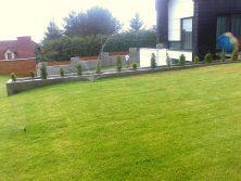 Trawnik nawodnienie