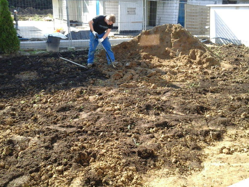 Przygotowanie gruntu przed zakładaniem traniwka