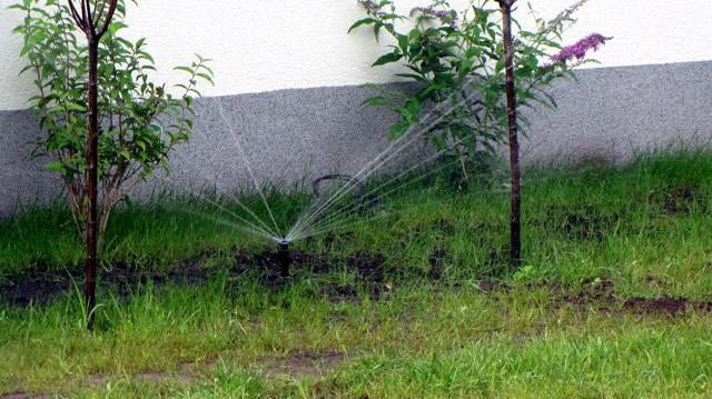 system nawadniający ogród podczas pracy