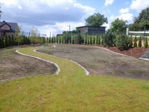 laka kwietna tuz po zasianiu z widocznym obrzezem z kamienia oddzielajacym trawnik od laki kwietnej