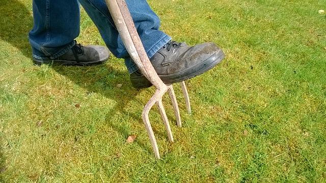 przyotowanie terenu pod trawnik